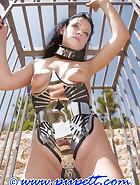 Phantastic steel corset