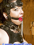 Chained to sulky, pic 9