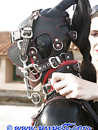 Hard lesson in latex, pic 7