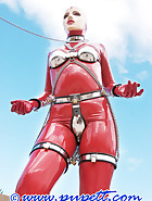 Chastity steel harness, pic 11