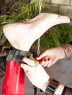 Chastina in stork, pic 5