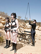 Ponygirls for a ride, pic 4