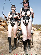 Ponygirls for a ride, pic 6