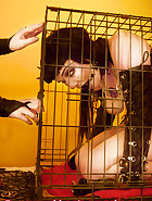Cuffed in a cage, pic 7
