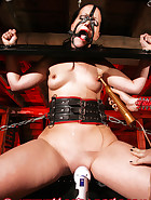 Multifunctional pillory, pic 9